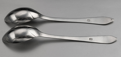 Cape Silver Lemoen Lepels (Pair) - Johannes Combrink